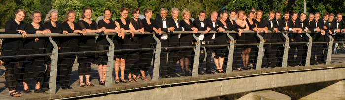 The Fionian Chamber Choir in Munke Mose, Odense (2016)